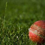 Cricketdag