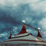 Cirkusfest