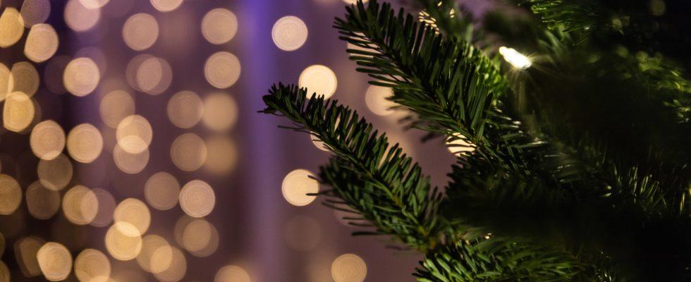 Tips Til Lege Og Underholdning Til Julefrokosten Fra Festdoktoren
