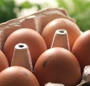 Kast med æg